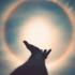 101 Top Instagram Spiritual Accounts To Follow
